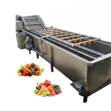 304 Stainless Steel Vegetable Carrot Sweet Potato Tomato Air Bubble Green Red Pepper Fruit Apple Washer Washing Machine
