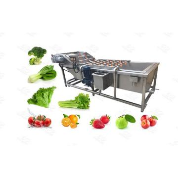 China Supplier Full Automatic Vegetable Process Machine From Washing to Freezing Processing Whole Line for Leaf Vegetables and Fruits Daylily Production Line