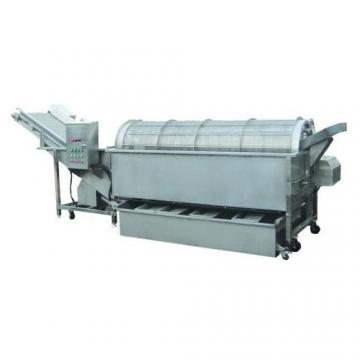 Industrial Vegetable Cleaning Machine Fruit Bubble Washer