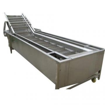 High Quality Vegetable and Fruit Washing and Drying Food Machine