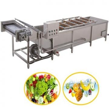 Industrial Fruit and Vegetable Cleaner Washer Bubble Washing Machine