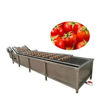 Air Bubble Circulation Vegetable Fruit Food Washing Cleaning Machine