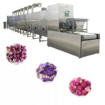 Belt Type Microwave Mesh Belt Drying Dryer Machine with Sterilization for Food/Fruit/Vegetable/Chemical/Health Care Products
