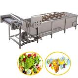 Best Price Fruit and Vegetable Brush Washing Machine for Sale