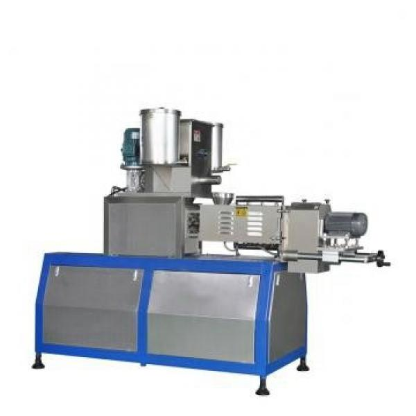 Sugar Coated Froasted Corn Flakes Coco Puffed Breakfast Cereals Machine Production Line #1 image