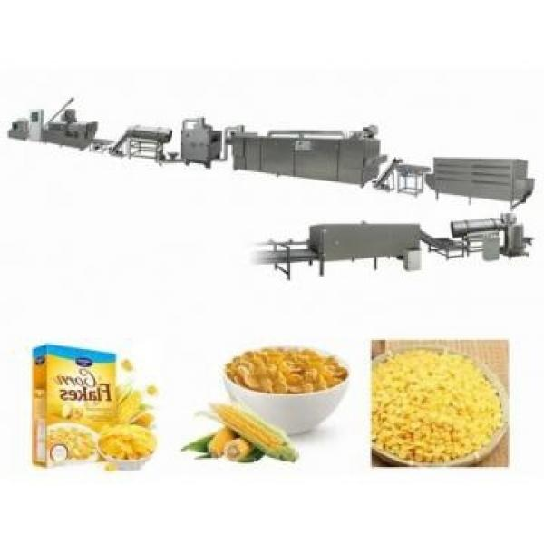 Sugar Coated Froasted Corn Flakes Coco Puffed Breakfast Cereals Machine Production Line #3 image