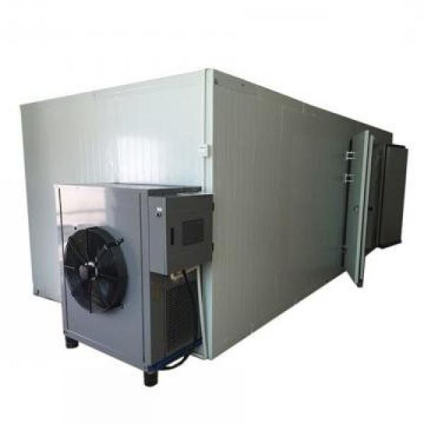 Commercial Tunnel Continuous Flower Microwave Drying Machine #1 image