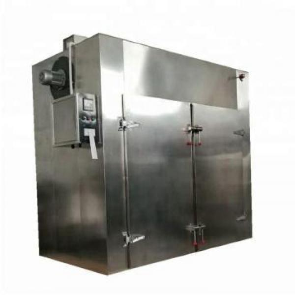 Commercial Fruit & Vegetable Dehydrator/ Food Dryer/ Drying Machine #2 image