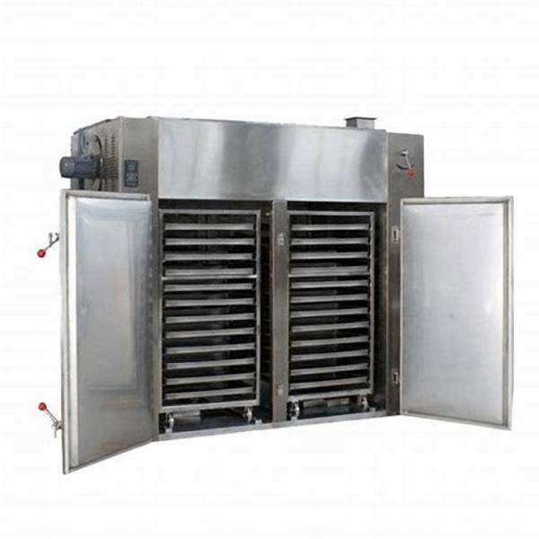 Commercial Litchi Longan Pineapple Fruit Drying Dehydration Machine #1 image