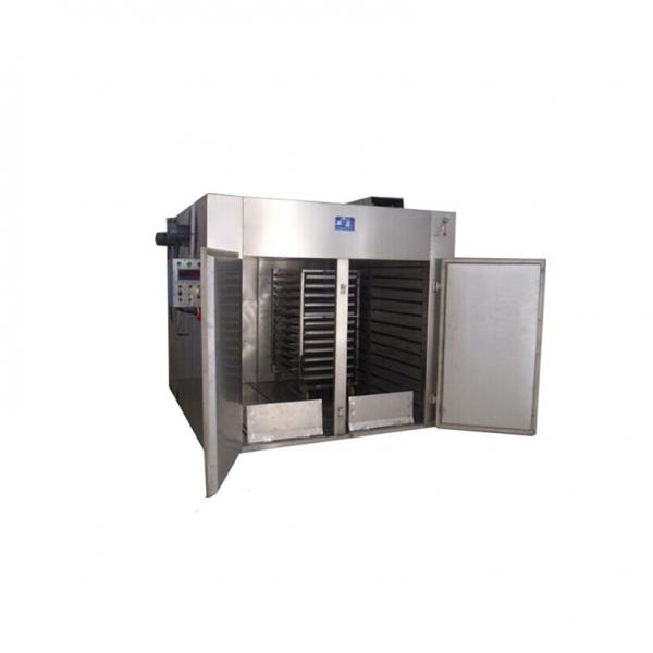 Commercial Tunnel Continuous Flower Microwave Drying Machine #2 image