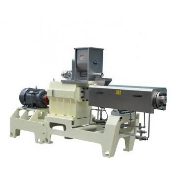 Factory Price Automatic Popcorn Flakes Packing Machine for Packing Sweet Corn Kernels Either #3 image